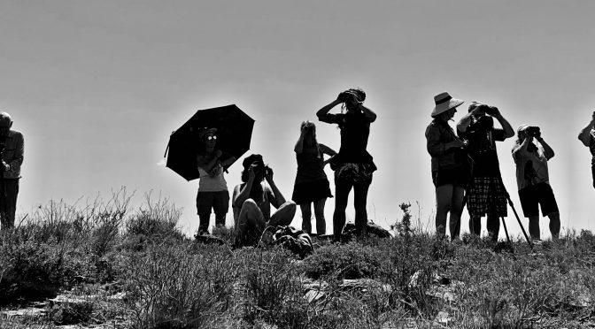 Visita a los humedales de Pitillas y Las Cañas