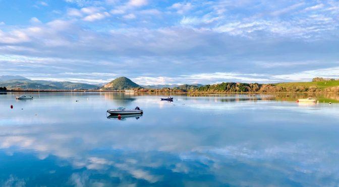 Visita Ornitológica a las Marismas de Santoña