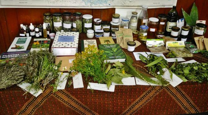 Taller de Plantas Medicinales y Cosmética Natural
